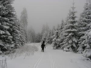 aufstieg schneeberg