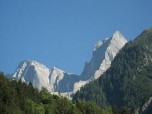 berg14